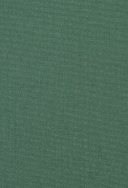 DAWN DARK GREEN ROLLER MAIN IMAGE